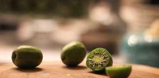 Nergi ягода нержи актинидтия