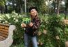 Eneloop botanic colors